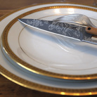 Deejo 2FB011 set of 6 steak knives Toile de Jouy , titan finish, olive wood handle 2
